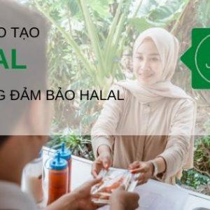 khoa dao tao Halal